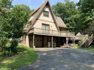 Clinton MI Single Family Home For Sale: $380,000