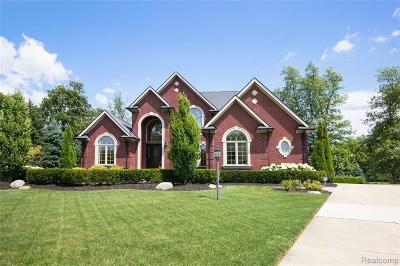 South Lyon Single Family Home For Sale: 22850 Saint Andrews Dr