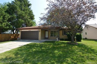 Novi Single Family Home For Sale: 24814 Highlands Dr