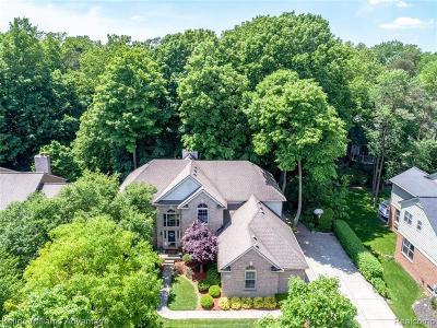 Novi Single Family Home For Sale: 43509 Castlewood