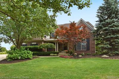 Northville Single Family Home For Sale: 15183 Merion Crt