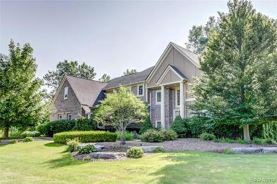 South Lyon Single Family Home For Sale: 8897 Stoney Creek Dr