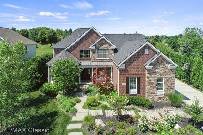 Novi Single Family Home For Sale: 24329 Saybrook Crt