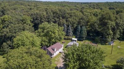 Chelsea Single Family Home For Sale: 18504 N Mi State Rd 52