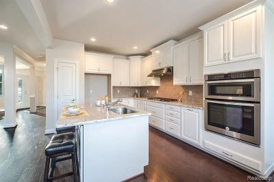 Novi Condo/Townhouse For Sale: 23952 Seminole Crt
