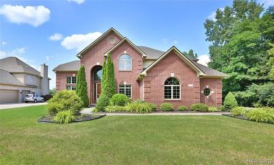 Northville Single Family Home For Sale: 39700 Golfview Dr