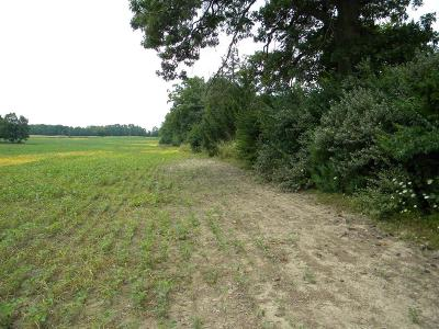 Manchester MI Residential Lots & Land For Sale: $189,000