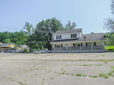 Grass Lake Commercial/Industrial For Sale: 8400 Clear Lake Rd