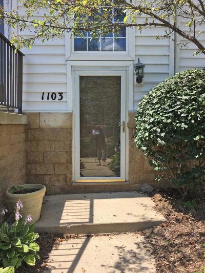 Ann Arbor Condo/Townhouse For Sale: 1103 Freesia Ct