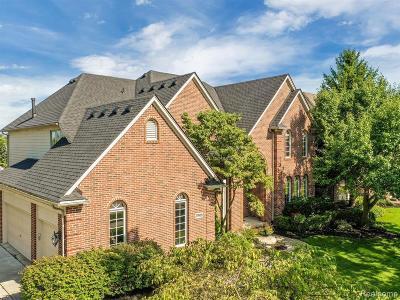 Novi Single Family Home For Sale: 23988 Westmont Dr