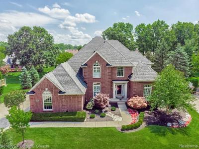 Novi Single Family Home For Sale: 22014 Chase Dr