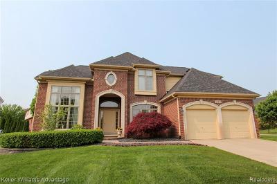 Novi Single Family Home For Sale: 24477 Thatcher Dr