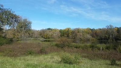 Ann Arbor MI Residential Lots & Land For Sale: $465,000