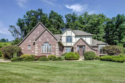 South Lyon Single Family Home For Sale: 8475 Stoney Creek Dr