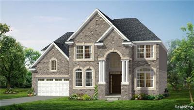 Novi Single Family Home For Sale: 43465 Ellesmere Cir