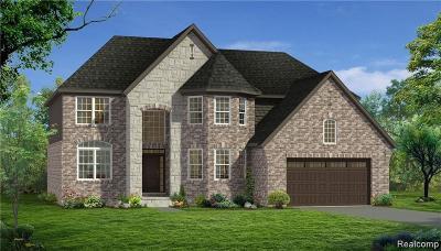 Novi Single Family Home For Sale: 43722 Bolingbrooke Ln