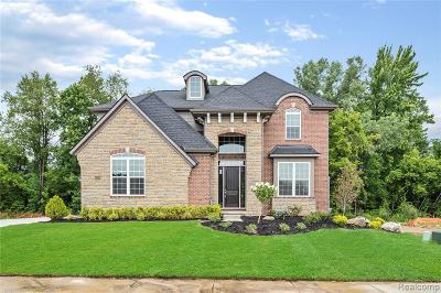 Novi Single Family Home For Sale: 43538 Bolingbrooke Ln