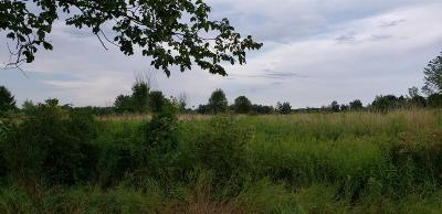 Adrian MI Residential Lots & Land For Sale: $59,900