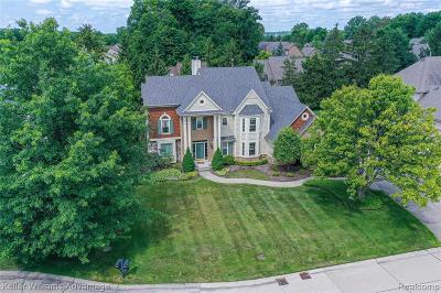 Farmington Hill Single Family Home For Sale: 28875 Spyglass