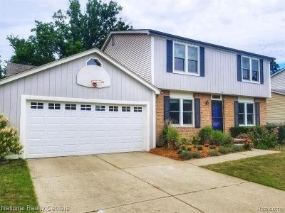 Canton Single Family Home For Sale: 6205 Porteridge Ln