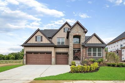 Novi Single Family Home For Sale: 43576 Ellesmere Cir