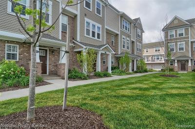 Wixom Condo/Townhouse For Sale: 415 Wright St