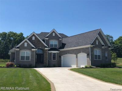 Brighton Single Family Home For Sale: 5633 Ciderberry Dr