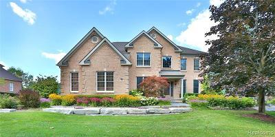 Novi Single Family Home For Sale: 47630 Aberdeen Dr