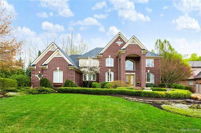 Northville Single Family Home For Sale: 17890 Cranbrook Crt