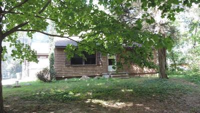 Ann Arbor Single Family Home For Sale: 631 N Wagner Rd