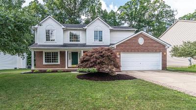 Ann Arbor Single Family Home For Sale: 5891 Rollingwood