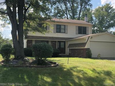 Novi Single Family Home For Sale: 22675 Winfield Rd