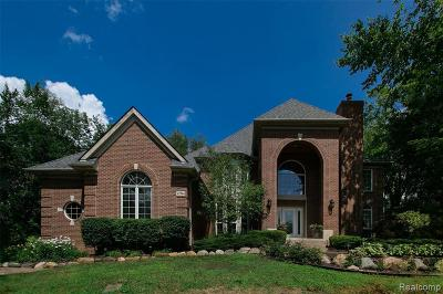 Novi Single Family Home For Sale: 47964 Andover Dr