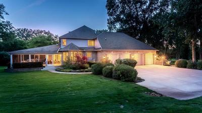 Ann Arbor Single Family Home For Sale: 5520 Stone Valley Dr