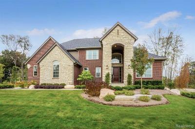 Novi Single Family Home For Sale: 47709 Alpine Dr
