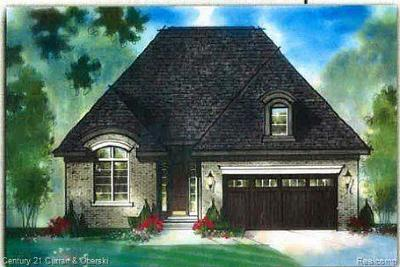 Plymouth Single Family Home For Sale: 47493 Verona Park Lot 9