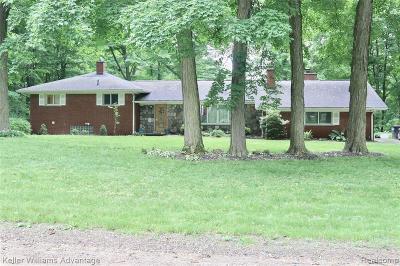 Northville Single Family Home For Sale: 20137 W Whipple Dr