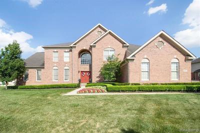 Novi Single Family Home For Sale: 25021 Hadlock Dr