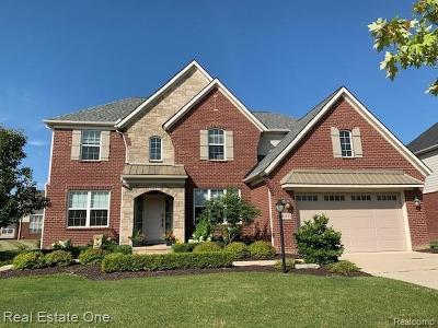 Novi Single Family Home For Sale: 41895 Wolfe Pass