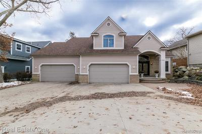 Lake Orion Single Family Home For Sale: 553 Central Dr