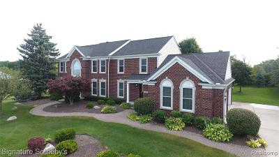 Plymouth Single Family Home For Sale: 10186 Fellows Hill Dr