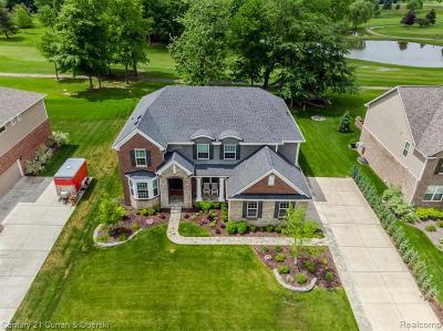 South Lyon Single Family Home For Sale: 53248 Hidden River Dr