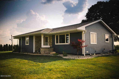 Hudson MI Single Family Home For Sale: $249,000