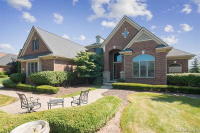 Northville Single Family Home For Sale: 18600 Marble Head Dr