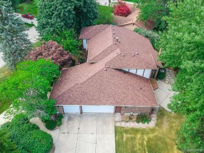 Farmington Hill Single Family Home For Sale: 31275 Applewood Ln