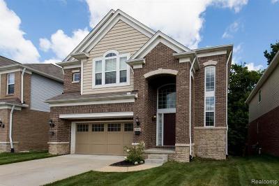 Novi Single Family Home For Sale: 28260 Wolcott Dr