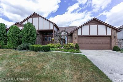 Farmington Hill Single Family Home For Sale: 38006 River Bnd