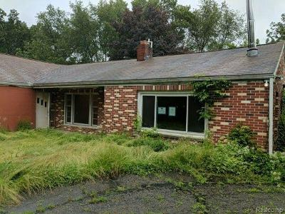 Lenawee County Single Family Home For Sale: 4901 Michigan Ave