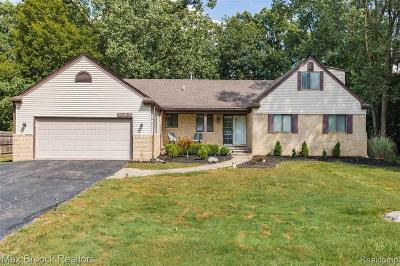 Southfield Single Family Home For Sale: 25474 Edgemont Dr