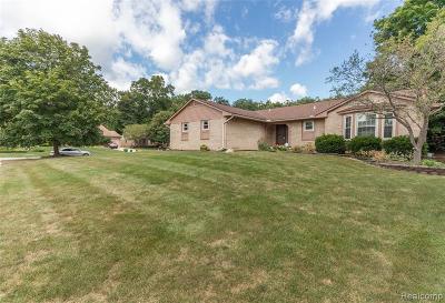 Farmington Hill Single Family Home For Sale: 38168 Lancaster Dr